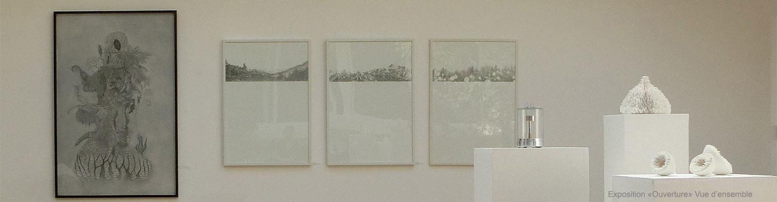 Vue d ensemble Exposition Ouverture Galerie Eko Sato